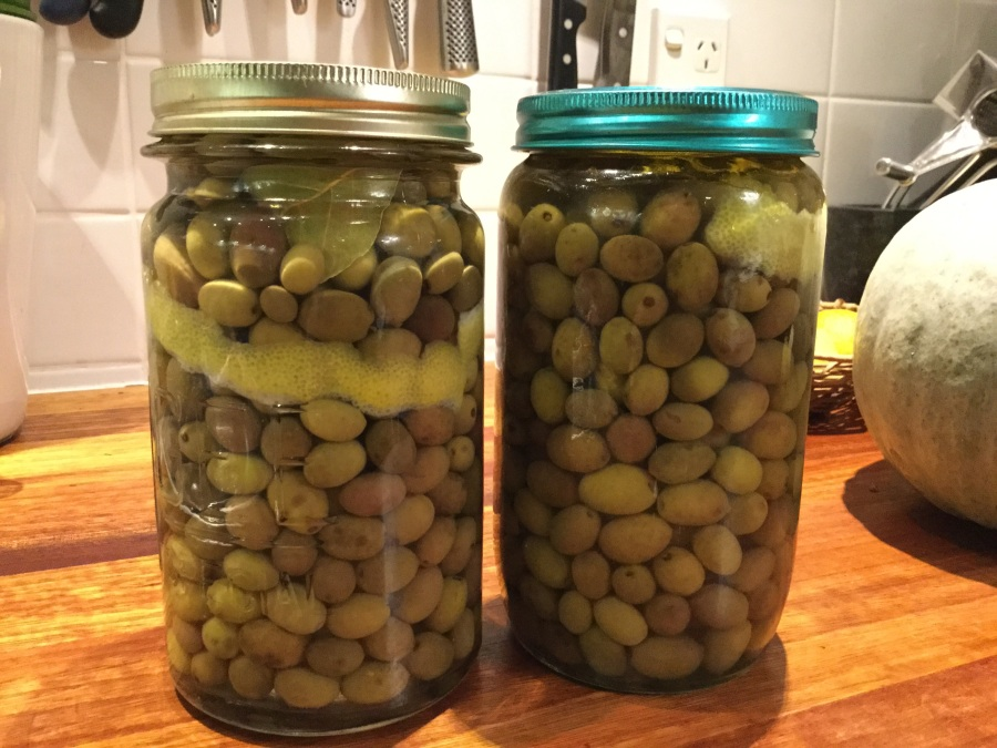 Brine Cured Green Olives