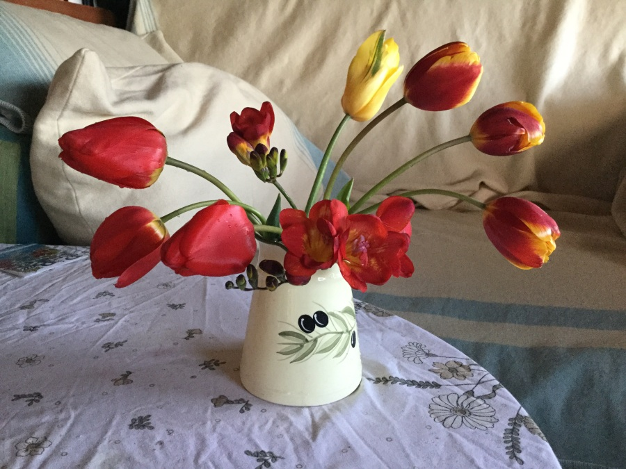 Tulips and Freesias