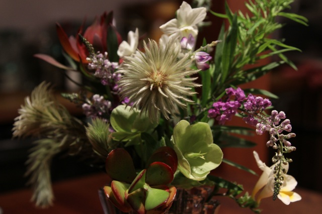 Flannel flower in a vase