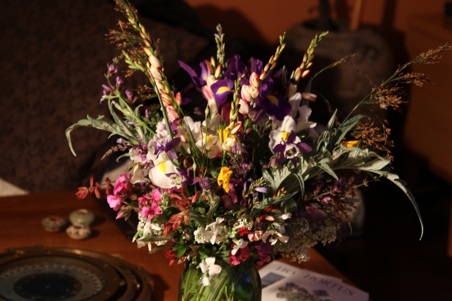 cut flowers ixias and iris