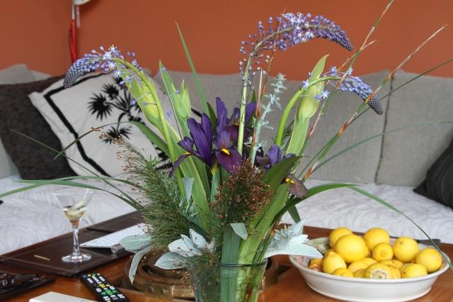 cut flowers merwillia plumbea