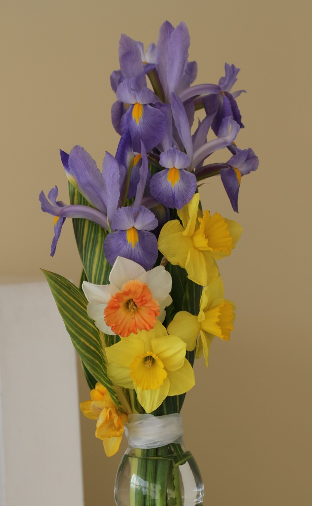 Daffodils and Iris cut flowers