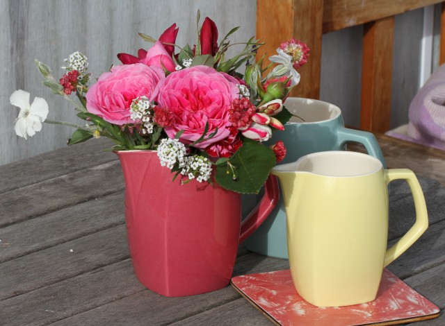 gertrude Jekyl roses cur flowers