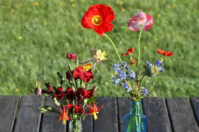 Columbine, carnations, and poppies in a vase