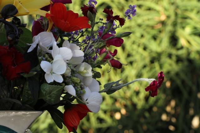hydrangea-lychnis-cut flowers