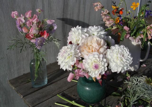 cut flowers dahlia eveline sweet peas scabiosa