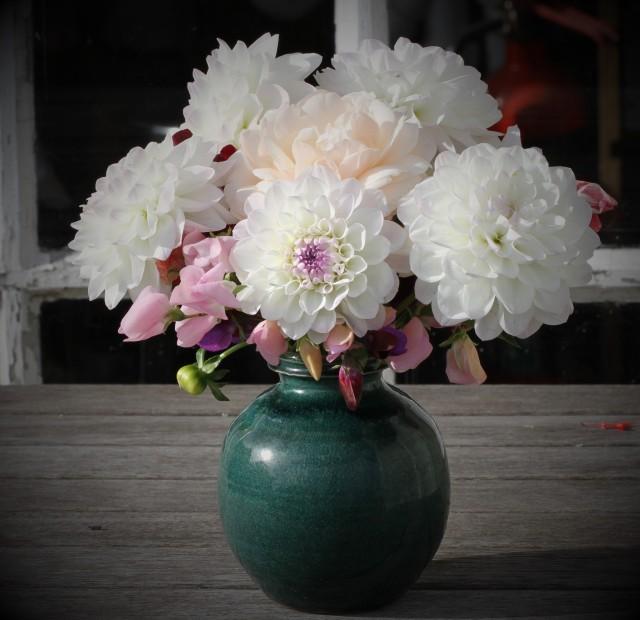 dahlia in Graham Storm vase