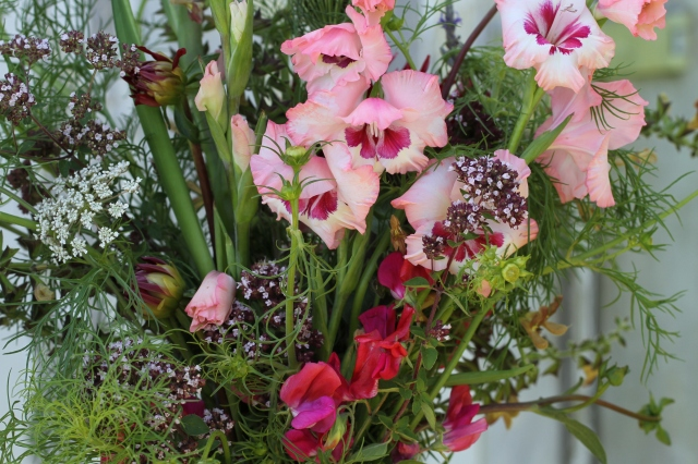 gladiolus cut flowers sweet peas