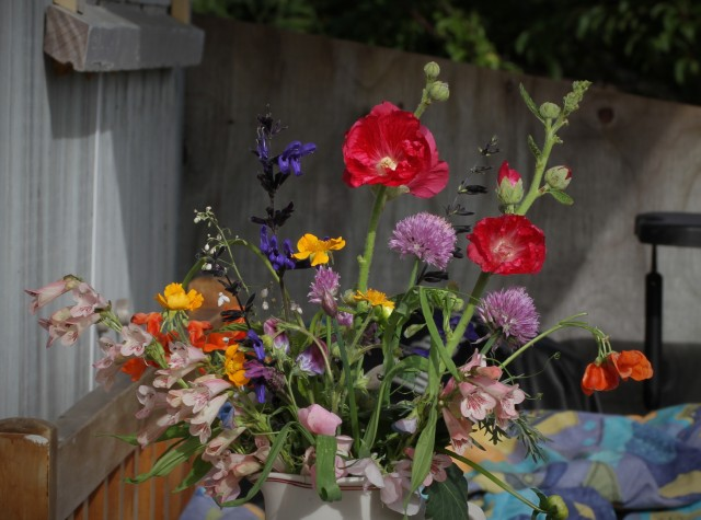 hollyhocks cut flowers
