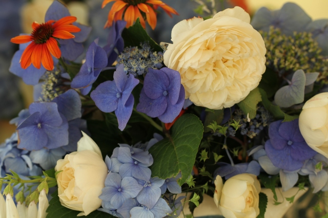 rose and hydrangeas with echinacea flower