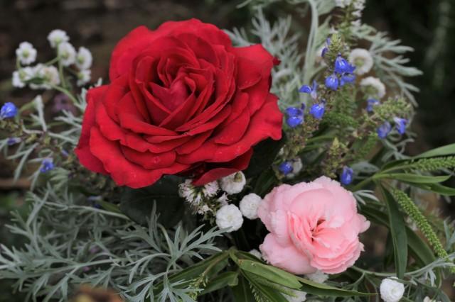 cut flowers rose deep secret and Otaki Pink