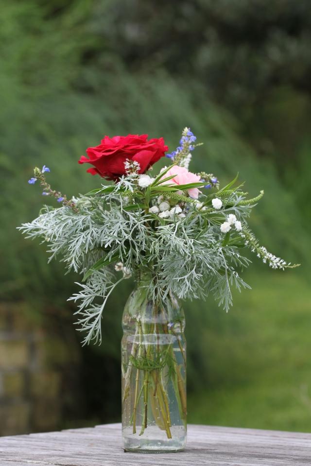 rose deep secret cut flower