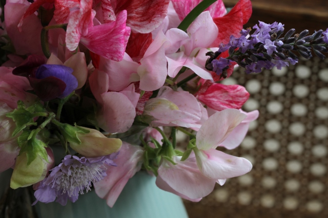 sweet pea and scabiosa