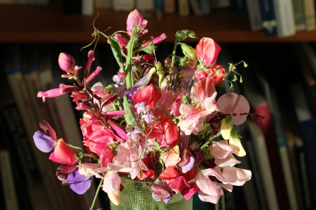 sweet peas antique spice with salvia