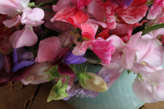 sweet peas antique spice