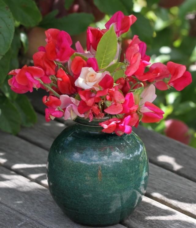 sweet peas cut flowers under plum tree