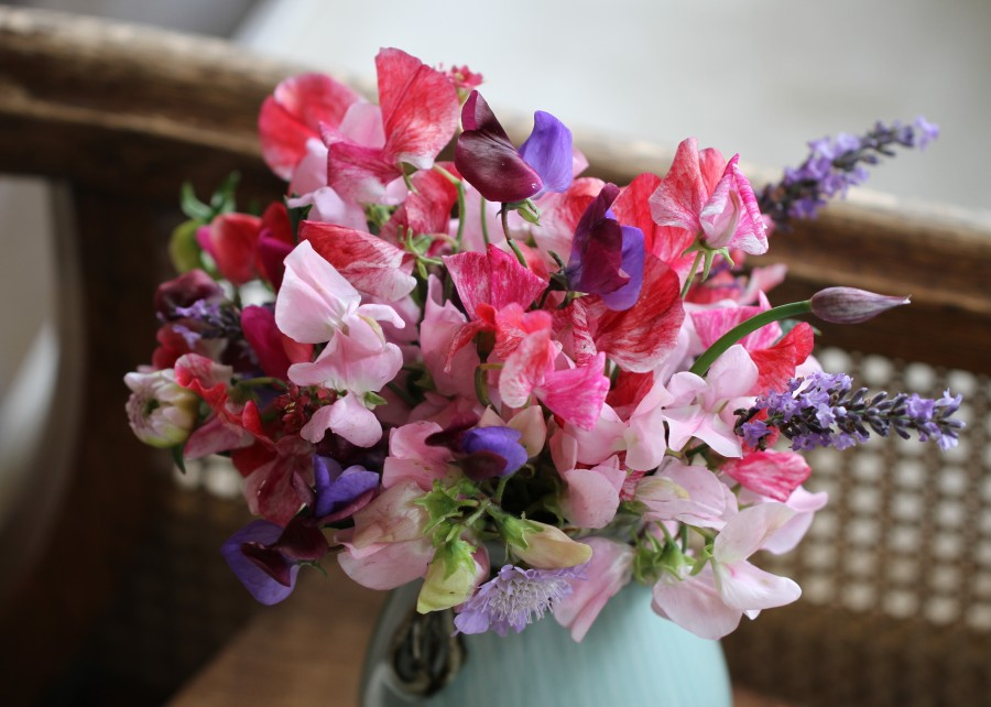sweet peas cut flowers