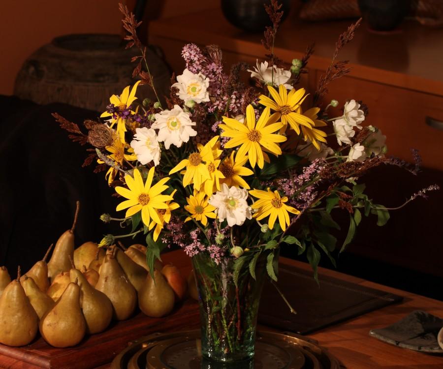 jerusalem artichoke cut flowers