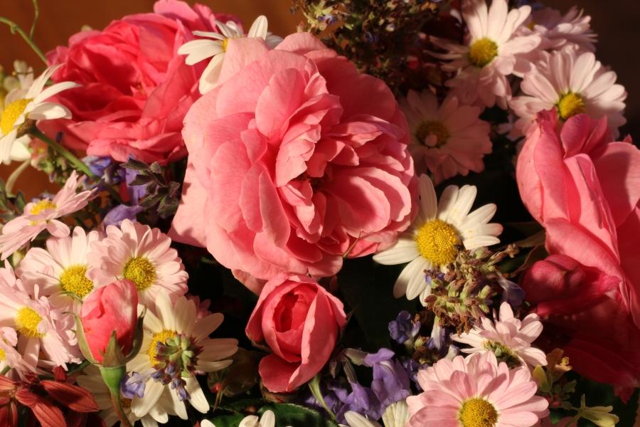 Cut flowers - Rose Gertrude Jeykll Salvia Chrysanthemum
