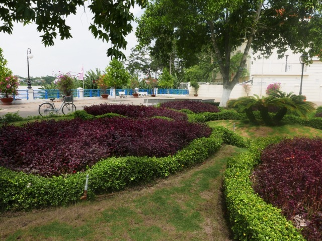 Coloured foliage planting Chau Doc Vietnam