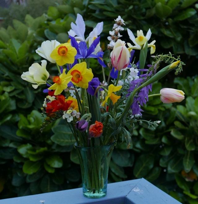 Tulips, daffodils, tulips, Iris