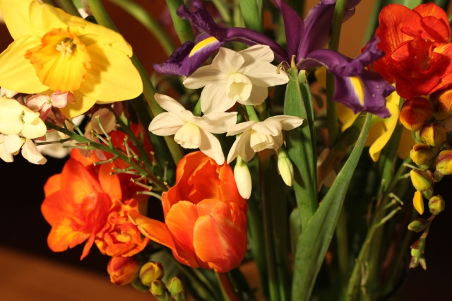 Tulips,narcissi, freesia, Iris, wallflower