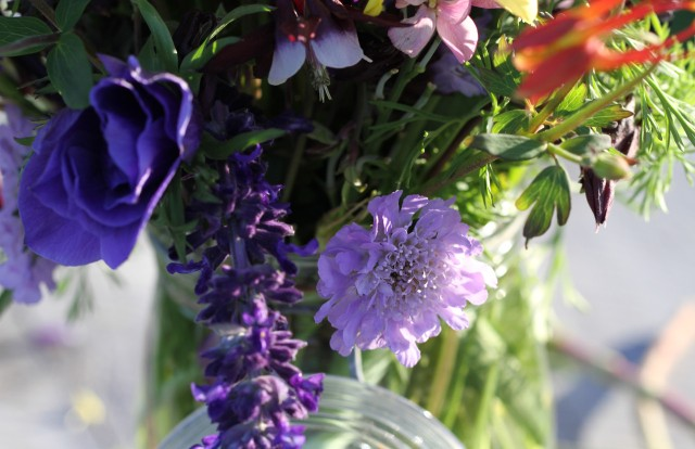 scabiosa with salvia indigo spires and columbine
