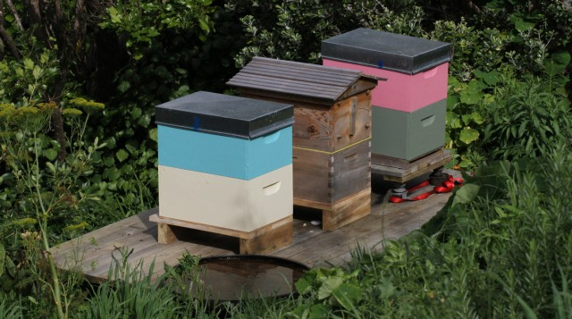 bee-hives-1400