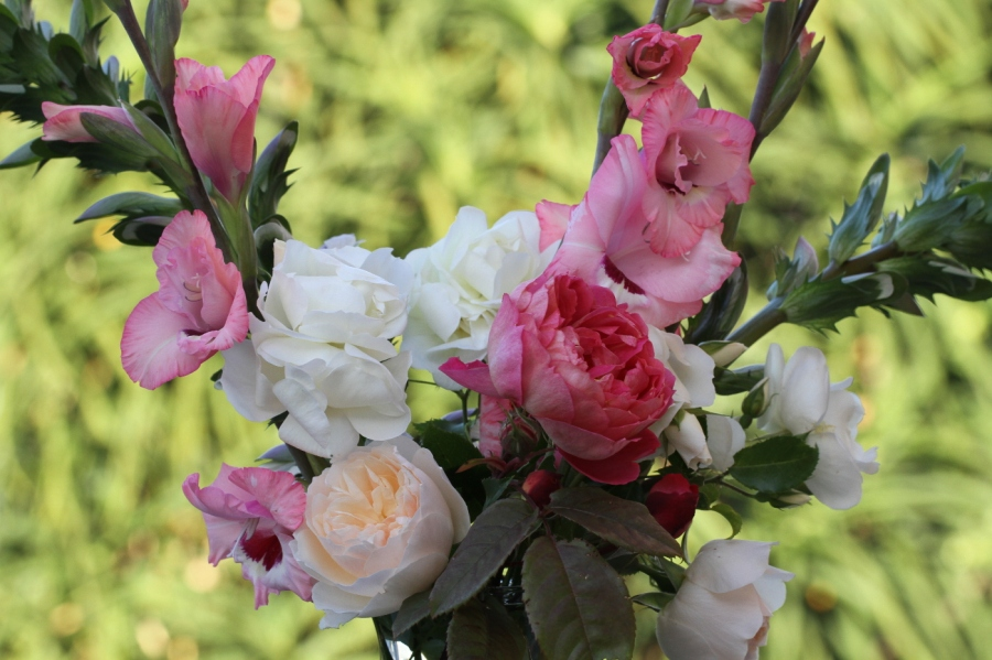 English Roses and gladiolus cut flowers