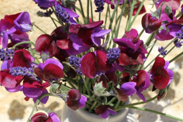 lavender-hidcote-and-cupani-sweet-peas-in-a-vase
