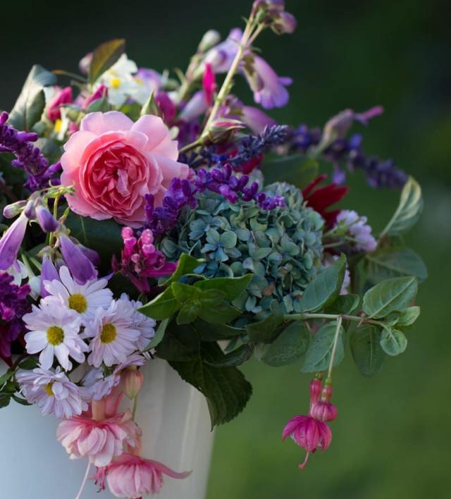 Roses, Chrysanthemum, Hydrangea, Penstemon, and Fuschia Cut Flowers