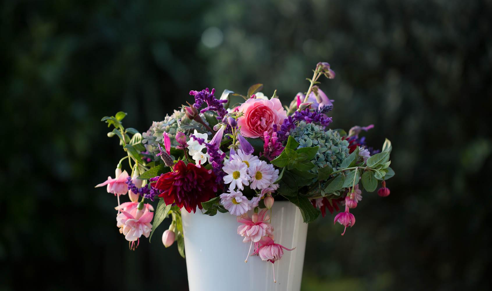 Cut Flowers Autumn Dahlia, Chrysanthemum, Roses, Hydrangeas and Fuschia