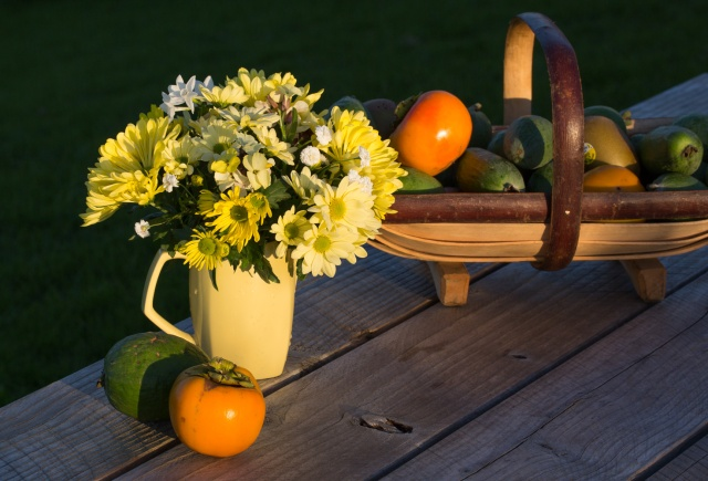 Cut flowers with Feijoas and Persimmons