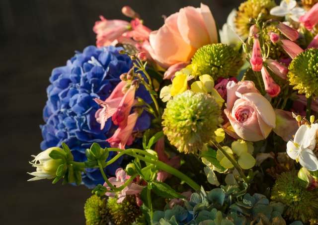 hydrangeas with chrysanthemum cut flowers