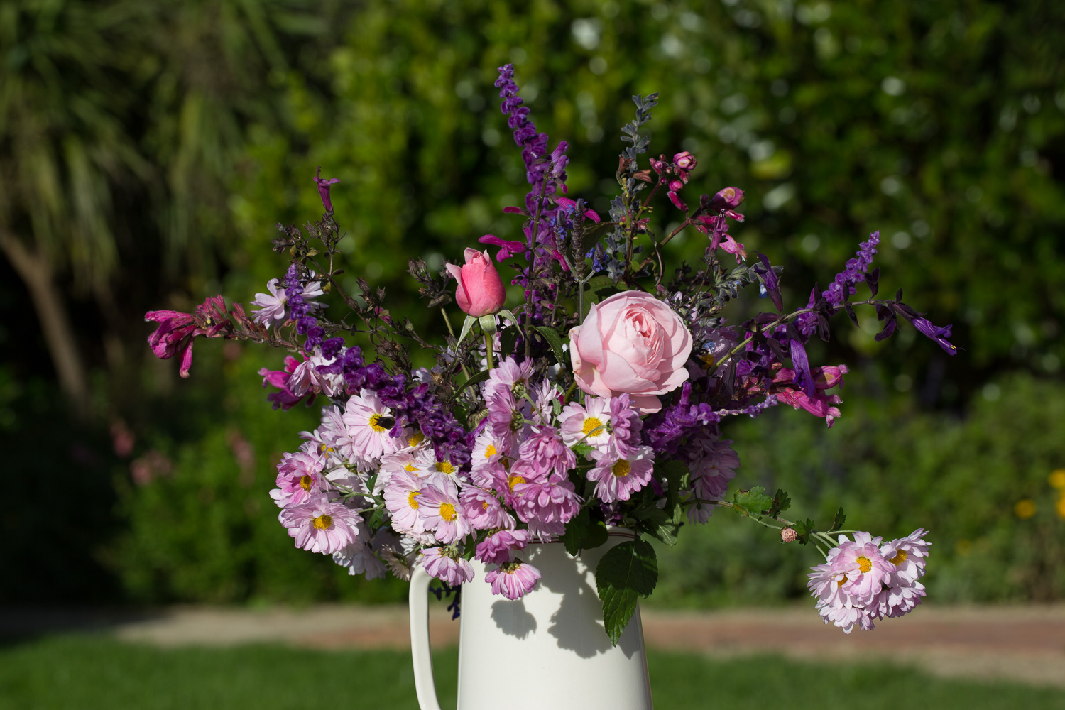 salvia and roses cut flowers