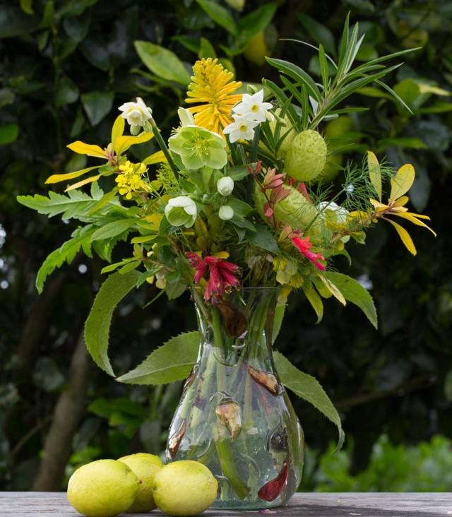 cut flowers poppy hellebore grevillia kniphofia