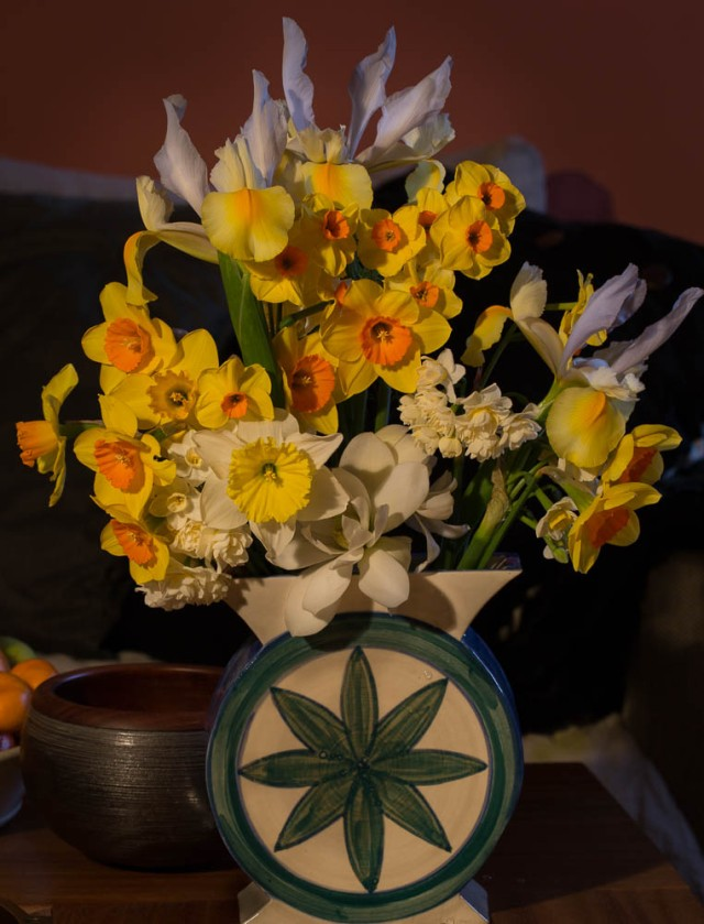 narcissus and dutch iris