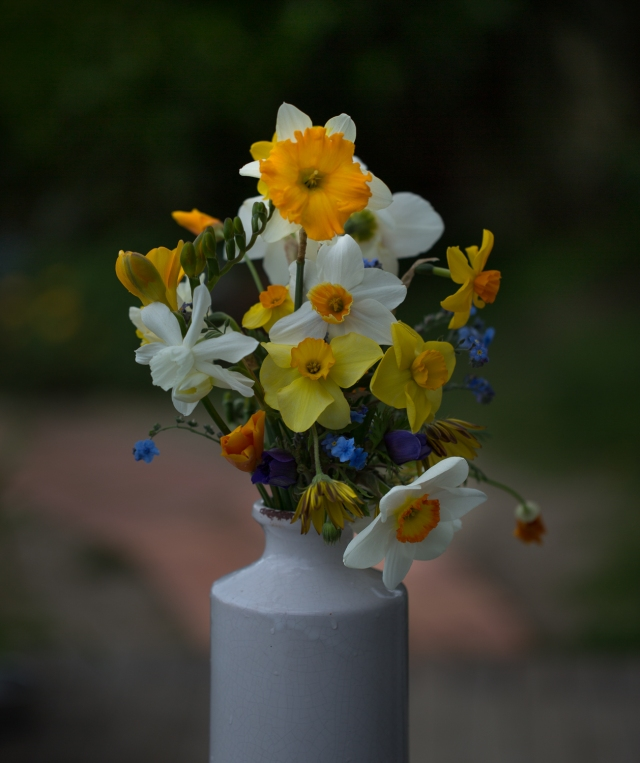 vase of daffodils and narcissi