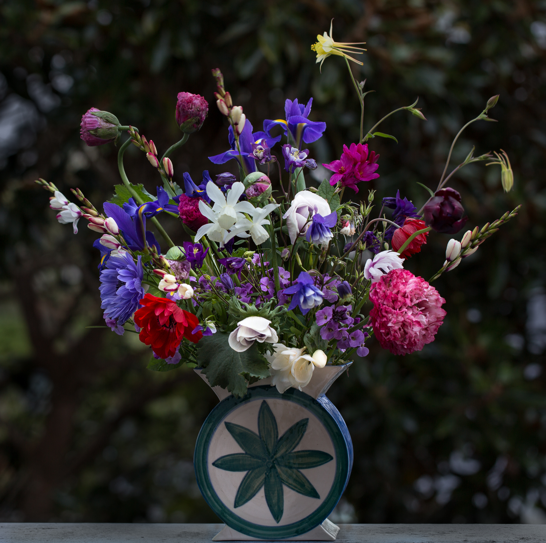 anemones poppies columbine and iris cut flowers