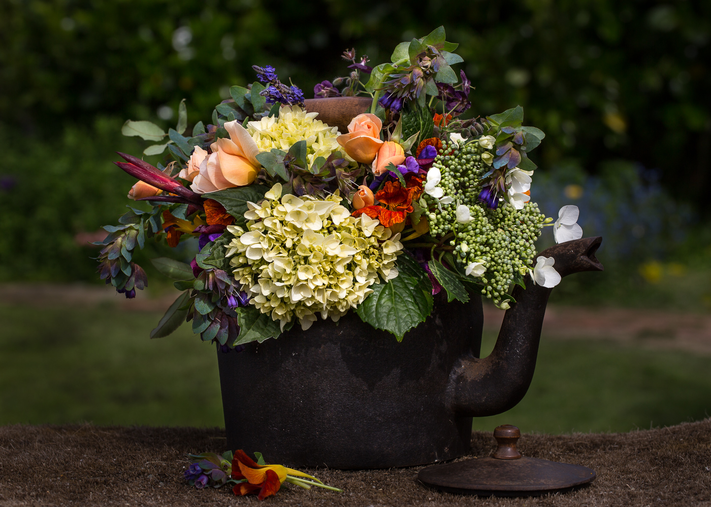 flowers in old cast iron kettle
