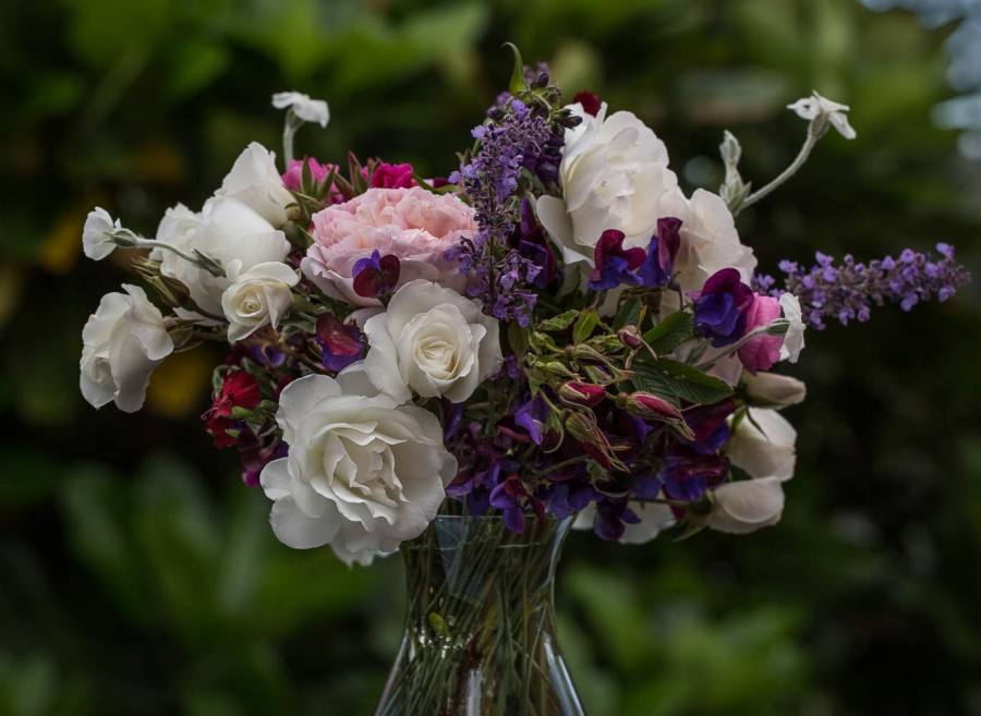 roses in vase - iceberg, rugosa and sweet peas