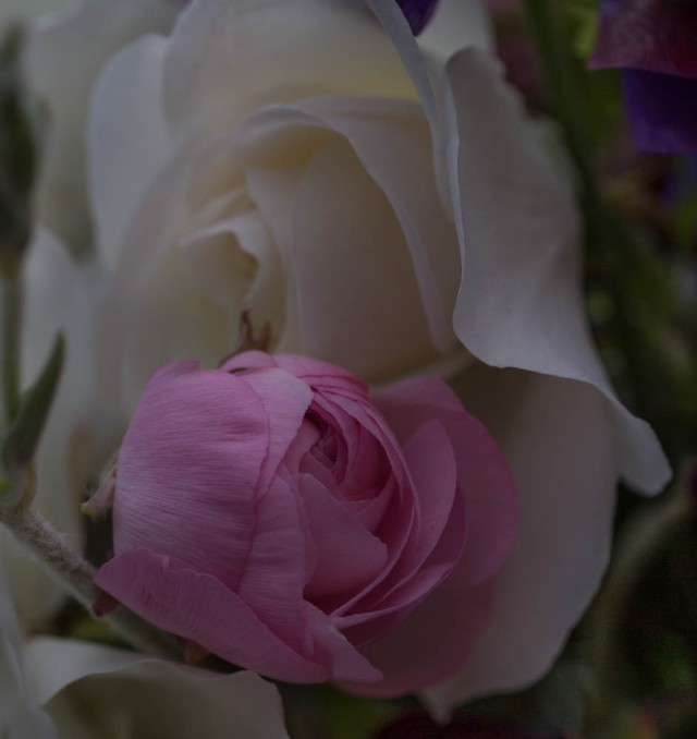 white rose and pale pink anemone