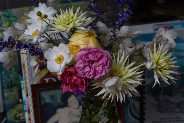 anemone roses and dahlias cut flowers
